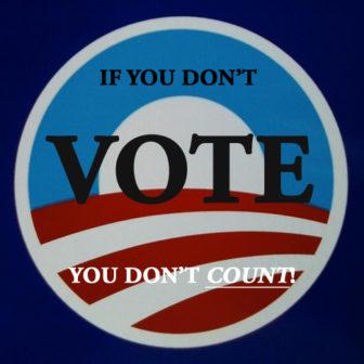 Voting by Todd Van Hoosear