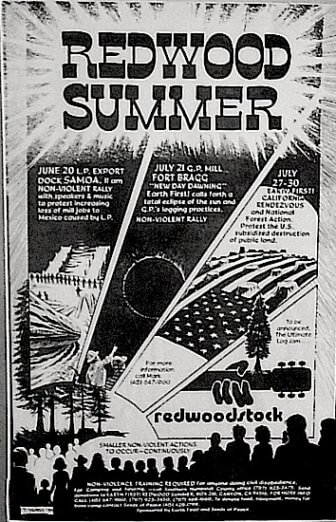 Redwood Summer